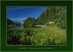 Bedwell River Tents