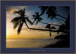 Kadavu Is. Fiji