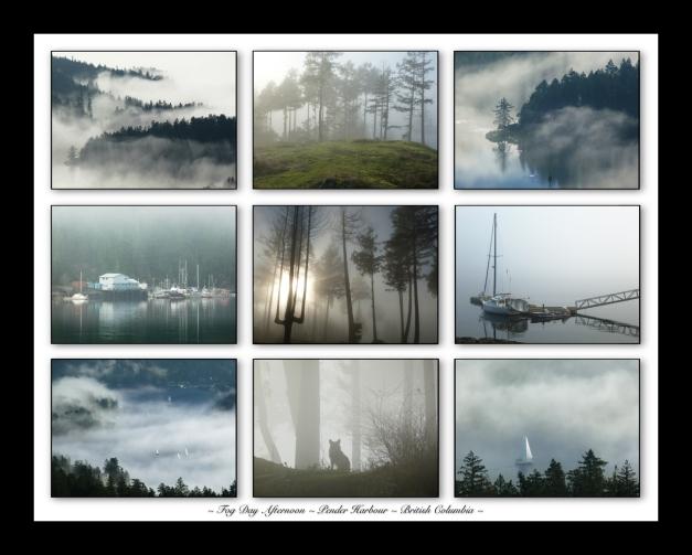 9 Pic.11x14 Fog Grid