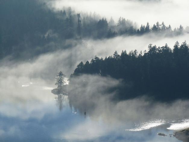 Fog26.