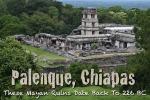palenque-031b