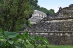 palenque-047